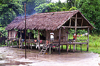 BRAZIL, Amazon, tribe Madiha or Kulina, village Sossego at river Baú a branch of river Juruá in rainforest, stilt house built from wood and palm leaf / BRASILIEN, Amazonas , Pfahlhaus aus Holz und Palmenblaettern der Indianer vom Stamm der Madiha auch Kulina im Indianerdorf Sossego am Fluß Baú ein Nebenfluß des Juruá
