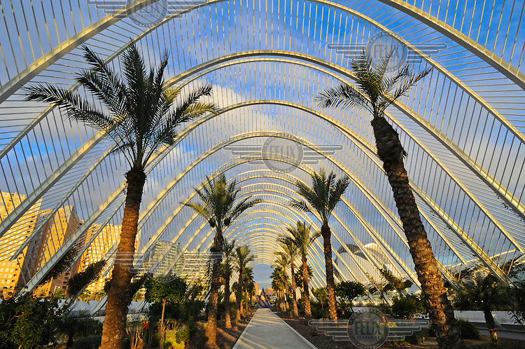 Interior of the Umbracle, an open air, but roofed garden promenade which is part of Valenica's new City of Arts and Sciences (Cuitat de les Arts de les Ciences), designed by Valencian architect Santiago Calatrava.