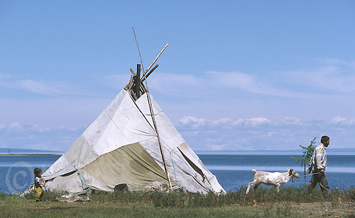 27 JUN 2002 - KHOVSGOL NATIONAL PARK, MONGOLIA - A Tsaatan camp. (PHOTO (C) NIGEL FARROW)