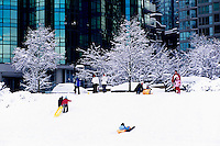 "Vancouver, BC, British Columbia, Canada - Children and Parents playing and sledding on Hill, Kids tobogganing in Downtown ""West End"" after Winter Snow Storm"