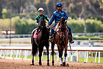 MAY 27: Rymska and Irad Ortiz Jr. before the Gamely Stakes at Santa Anita Park in Arcadia, California on May 27, 2019. Evers/Eclipse Sportswire/CSM