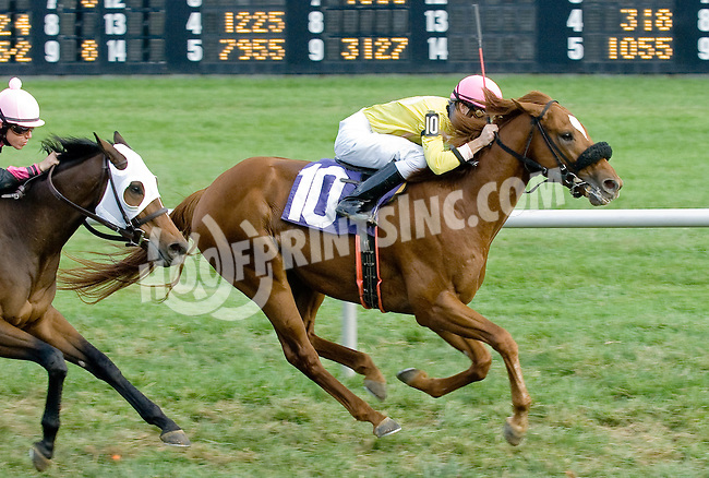 Native Wave winning at Delaware Park on 10/1/12