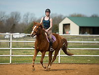 NWA Democrat-Gazette/BEN GOFF @NWABENGOFF<br /> Kendall Holton, a volunteer from Bentonville, takes a sport riding lesson with Carlot Thursday, March 22, 2018, at Horses for Healing in Bentonville. Horses for Healing is a nonprofit organization that primarily provides therapeutic riding for Northwest Arkansas school children with physical, emotional and mental dissabilities in addition to advanced sport riding lessons and camps for independent riders.