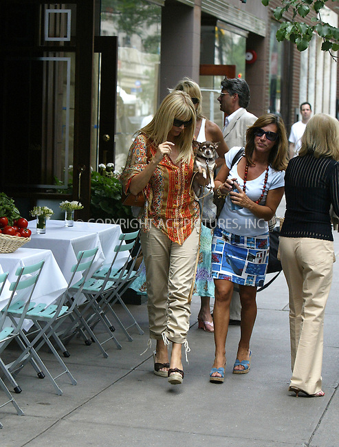 WWW.ACEPIXS.COM ** ** **EXCLUSIVE!!! FEE MUST BE NEGOTIATED BEFORE USE!!!....NEW YORK, JUNE 14, 2005....Lisa Gastineau meets a group of friends outside a midtown restaurant.....Please byline: Philip Vaughan -- ACE PICTURES... *** ***  ..Ace Pictures, Inc:  ..Craig Ashby (212) 243-8787..e-mail: picturedesk@acepixs.com..web: http://www.acepixs.com