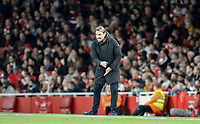 Daniel Farke Manager of Norwich City during the Carabao Cup match between Arsenal and Norwich City at the Emirates Stadium, London, England on 24 October 2017. Photo by Carlton Myrie.
