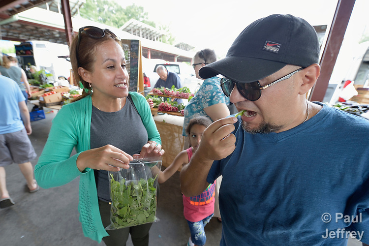 Ariadna Barrueto Alejo coaxes Miguel Antonio Rodriguez to taste arugula in the Durham Farmers' Market in Durham, North Carolina. Both are Cuban refugees who were resettled in Durham by Church World Service, which resettles refugees in North Carolina and throughout the United States.<br /> <br /> Photo by Paul Jeffrey for Church World Service.