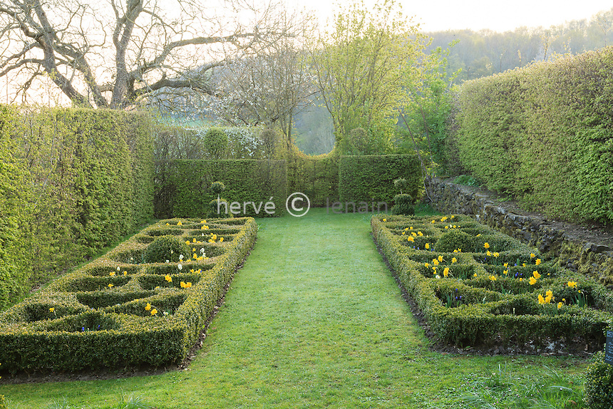 Jardin de la Ferme du Mont des Récollets: petit espace clôt et broderies de buis plantées de narcisses et muscaris. // France, garden of Ferme du Mont des Récollets, small closed space and embroidery boxwood with daffodils and hyacinths