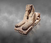 Ancient Egyptian Sphinx statue, sandstone, New Kingdom, early 19th Dynasty (1292-1250), Karnak, Temple of Amon. Egyptian Museum, Turin. Grey background<br /> <br /> The Phatoah and queen could be represented by Sphinx statues and by associating human faces with the body of a lion the Egyptians combined the strength of the animal that was connected to the sun god with human inetelligence. In this guardian rols sphinxes were generally placed facing each other on either side of temple gates, processional ways or dooways inside the temple. . Drovetti Collection. C1408