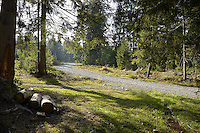 FOREST_LOCATION_90123