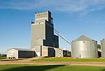 Metal grain elevator and steel grain storage tanks