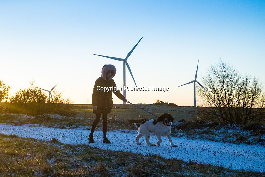 17/01/19<br /> <br /> After overnight snow flurries, Freya Kirkpatrick (11) and her springer spaniel, Chester, brave a sub-zero walk before school on the High Peak Trail close to Middleton Top, near wirksworth in the Derbyshire Peak District. <br /> <br /> <br /> All Rights Reserved, F Stop Press Ltd.  (0)7765 242650  www.fstoppress.com rod@fstoppress.com