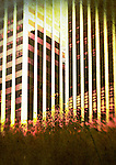 textured image of office buildings with bushes inthe foreground