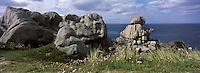 Europe/France/Bretagne/29/Finistère/Côte du Léon/Cleder: Côte rocheuse