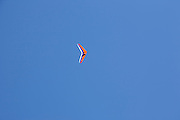 A hang glider flying over the eastern slopes of Mount Washington in the White Mountains, New Hampshire USA during the summer months. Photo from along the Alpine Garden Trail.