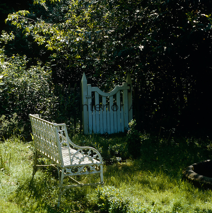 A wrought-iron bench in the sunlight in a corner of the garden