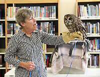 LYNN KUTTER ENTERPRISE-LEADER<br /> Lynn Sciumbato with Morning Star Wildlife Rehabiliation Center gave a program on Birds of Prey last week at Farmington Public Library. She's holding Sydney, a Bard owl that was hit by a vehicle. The city is finalizing plans to expand and remodel the library.