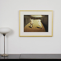 """Palanker: Inquiry, Digital Print, Image Dims. 14"""" x 20"""", Framed Dims. 21.25"""" x 27.25"""""""