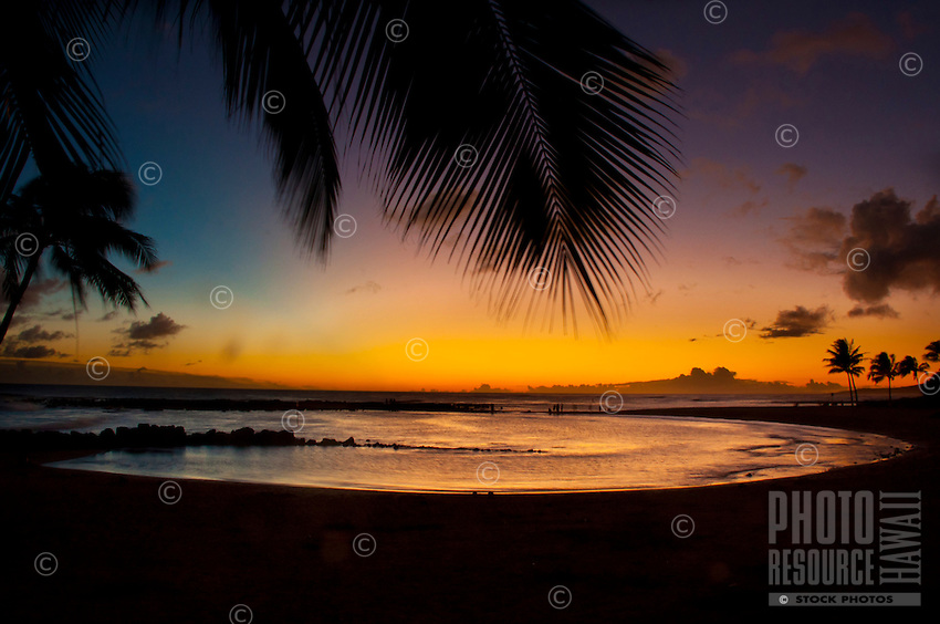 A view of a golden sunset with palm tree fronds waving in the tradewinds, Brennecke's Beach, Poipu, Kauai.