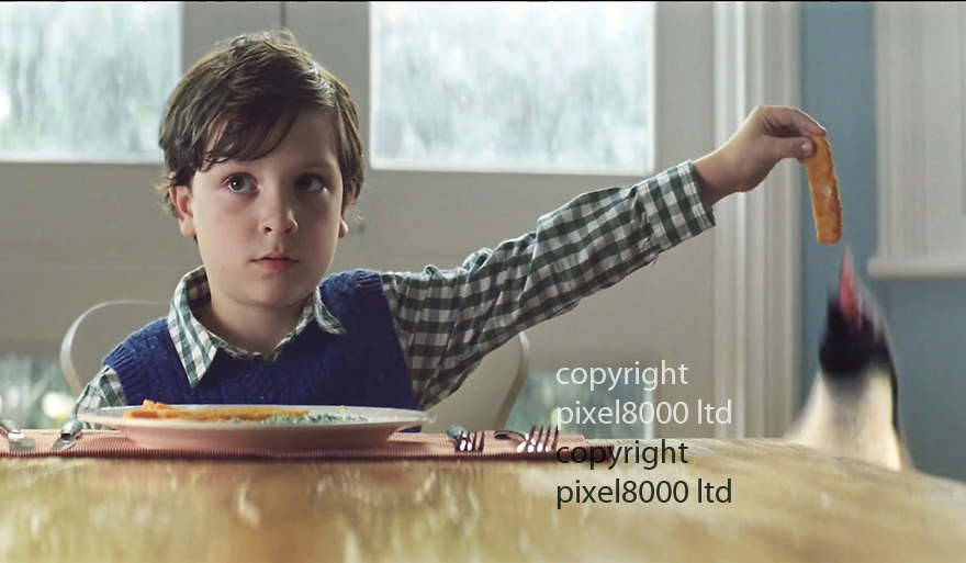 John Lewis Advert Xmas 2014<br /> Stars little boy named &quot;Sam&quot; and &quot;Monty The Penguin&quot;<br /> <br /> Sam secretly feeds fish fingers to Monty at tea time<br /> <br /> <br /> <br /> <br /> Pic supplied by Pixel 8000 Ltd