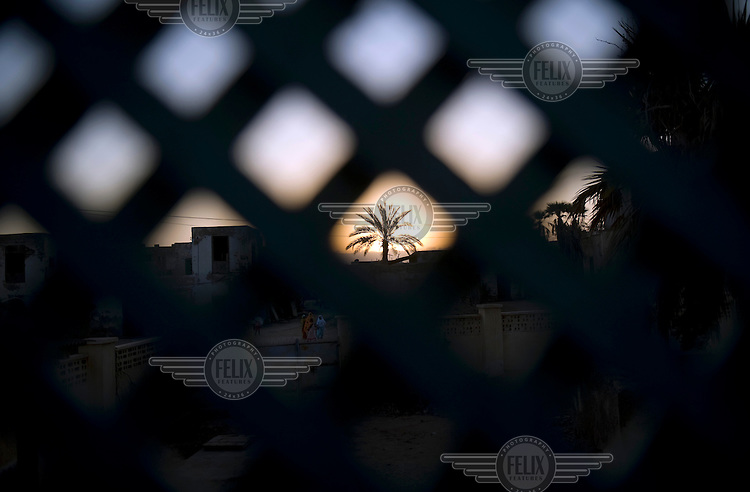 View of a palm tree through a lattice window in the old town of the harbour city of Massawa. .