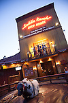Mechanical bull in front of Saddle Ranch Chop House at Universal Citywalk Hollywood in Los Angeles, CA, USA