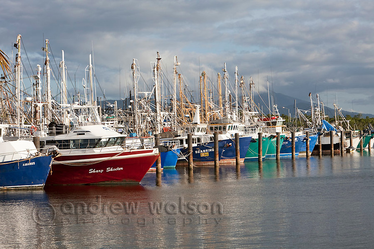 Fishing trawlers at Portsmith.  Cairns, Queensland, Australia