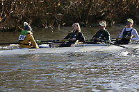 Wallingford Head 2017<br /> <br /> To purchase this photo, or to see pricing information for Prints and Downloads, click the blue 'Add to Cart' button at the top-right of the page.
