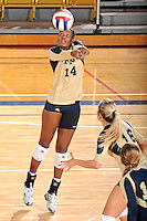 11 September 2011:  FIU setter Renele Forde (14) keeps the ball in play in the second set as the FIU Golden Panthers defeated the Florida A&M University Rattlers, 3-0 (25-10, 25-23, 26-24), at U.S Century Bank Arena in Miami, Florida.