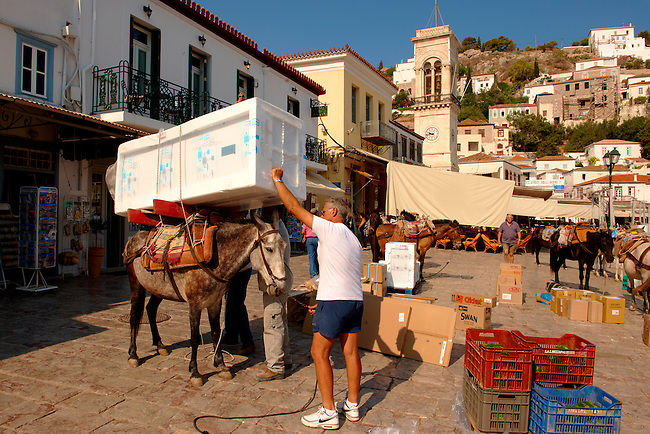 Pack Pony moving a fridge on Hydra,  Greek Saronic Islands