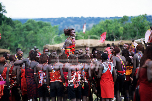 Lolgorian, Kenya. Eunoto coming of age ceremony; moran Maasai warriors doing their traditional Ipid jumping dance.
