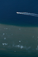 France, Gironde (33),Bassin d'Arcachon,  - vue aérienne //  France, Gironde, Bassin d'Arcachon - aerial view