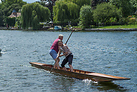 Maidenhead, United Kingdom.  &quot;Mixed Double&quot;, &quot;Thames Punting Club Regatta&quot;, Bray Reach.<br /> 13:13:38 Sunday  06/08/2017<br /> <br /> [Mandatory Credit. Peter SPURRIER Intersport Images}.<br /> <br /> LEICA M (Typ 262) mm  f5.6   1/500 /sec    100 ISO River Thames, .......... Summer, Sport, Sunny, Bright, Blue Skies, Skilful,