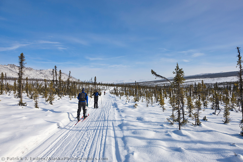 Cross country skiing in the White Mountains National Recreation Area.