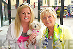 Breda Brosnan, Rita Holly and Maisie the Dog enjoying Aine's Cafe in the Square 10th Birthday celebrations on Saturday