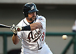 Reno Aces catcher Konrad Schmidt during an at-bat in a triple-A minor league baseball game between the Reno Aces and the Colorado Springs Sky Sox on Thursday, April 5, 2012, in Reno, Nev. The Aces won their season-opener 5-2..Photo by Cathleen Allison