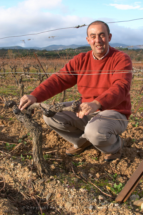 Jean-Christophe Piccinini Domaine Piccinini in La Liviniere Minervois. Languedoc. Vines trained in Cordon royat pruning. Owner winemaker. France. Europe. Vineyard.