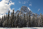 Washington, Northwestern, North Cascades National Park, Washington Pass. Liberty Bell Peak with fresh snow in spring.