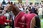 October 5, 2019, Paris (France) - Raahah (6) with Francois-Xavier Bertras up wins the Qatar Arabian Trophy des Juments (Gr I) on October 5 at ParisLongchamp Race Course. [Copyright (c) Sandra Scherning/Eclipse Sportswire)]