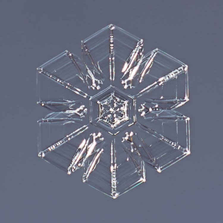 Snowflake Superba - Hexagonal Plate Snowflake