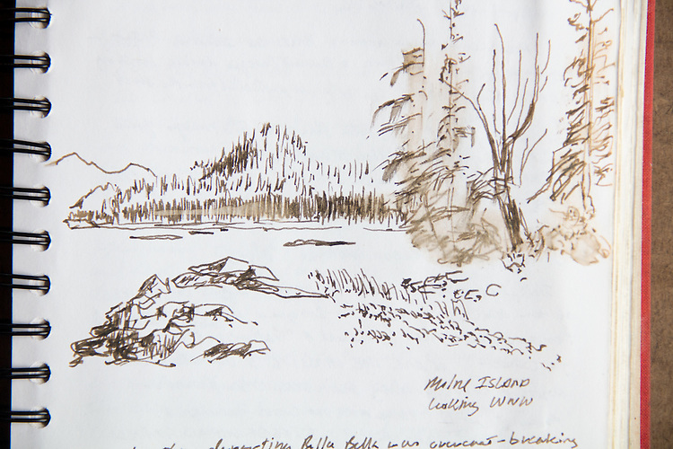 Great Bear Rainforest, ink on paper, ink sketch, Journal Art, Journal Art 2005, July 19th 2005, Milne Island