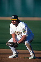 OAKLAND, CA - Jason Giambi of the Oakland Athletics plays defense at first base during a game at the Oakland Coliseum in Oakland, California in 2000. Photo by Brad Mangin