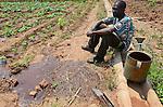 Malawi, Thyolo, NGO CARD Churches Action in Relief and Development, Bewaesserungssystem im Dorf Samuti, Farmer John Chimwaye, 56 bewaessert seine Gemuesefelder