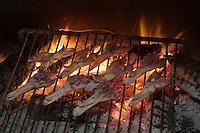 Europe/France/Aquitaine/40/Landes/Escalans:Avec Jean Barrère à  sa Palombière de la Ganaderia de Buros préparation du repas de chasse,cuisson au grill des becs de canard gras