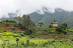 A traditional farmhouse and padi fields in Punakha State..Bhutan the country that prides itself on the development of 'Gross National Happiness' rather than GNP. This attitude pervades education, government, proclamations by royalty and politicians alike, and in the daily life of Bhutanese people. Strong adherence and respect for a royal family and Buddhism, mean the people generally follow what they are told and taught. There are of course contradictions between the modern and tradional world more often seen in urban rather than rural contexts. Phallic images of huge penises adorn the traditional homes, surrounded by animal spirits; Gross National Penis. Slow development, and fending off the modern world, television only introduced ten years ago, the lack of intrusive tourism, as tourists need to pay a daily minimum entry of $250, ecotourism for the rich, leaves a relatively unworldly populace, but with very high literacy, good health service and payments to peasants to not kill wild animals, or misuse forest, enables sustainable development and protects the country's natural heritage. Whilst various hydro-electric schemes, cash crops including apples, pull in import revenue, and Bhutan is helped with aid from the international community. Its population is only a meagre 700,000. Indian and Nepalese workers carry out the menial road and construction work.