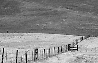 Black-and-white fine art western landscape of ranch fence leading towards ranch cattle gate and across rolling, golden Caifornia hills, resulting in 2 fence lines converging in the lower right, reaching towards a line of hill pattern descending downward from upper left to lower right.
