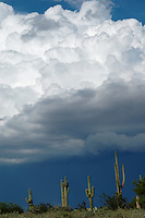 A summer thunderstorm brews int eh mountains surrounding the Valley of the Sun and Phoenix, Arizona.