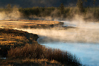 Madison river with early morning fog, Yellowstone National Park, Wyoming