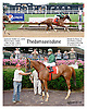 Thedamageisdone winning at Delaware Park on 8/2/14
