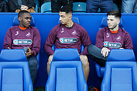 (L-R) Barrie McKay and Courtney Baker-Richardson and Cian Harries during the Sky Bet Championship match between Sheffield Wednesday and Swansea City at Hillsborough Stadium, Sheffield, England, UK. Saturday 23 February 2019