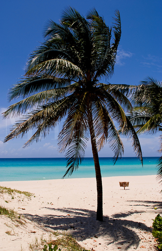 Beautiful blue water and beaches with palm trees of Cubas best beach called Varadero in Cuba